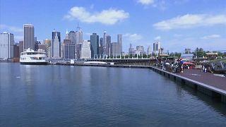 La iniciativa voluntaria un billón de ostras en Nueva York