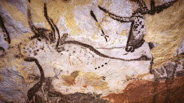 Représentation de taureaux présents dans la grotte de Lascaux en Dordogne, dans le sud-ouest de la France