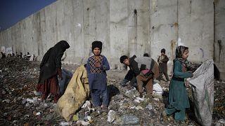 Milhões de afegãos enfrentam emergência alimentar