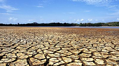 Landscape of a dry, cracked soil with water and vegetation in the background in Ilha do Caju, state of Maranhão, Brazil.