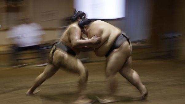 مصارعة السومو