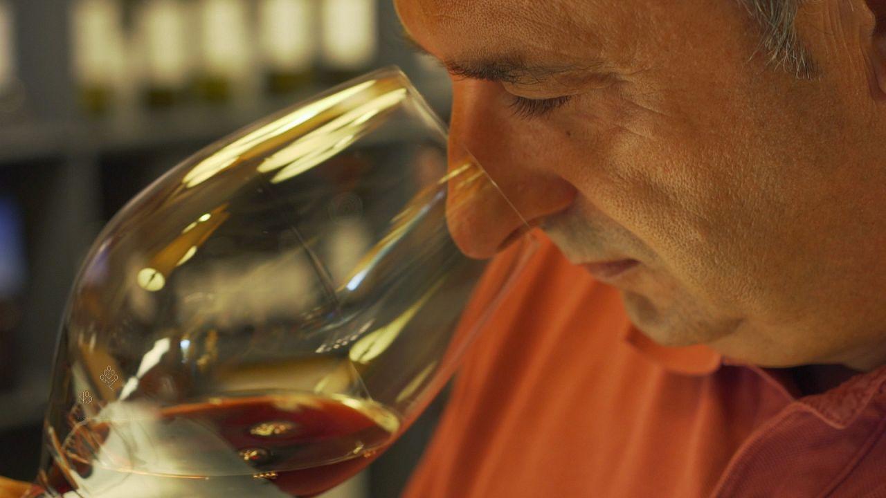 Weinland Spanien: Rioja, Sherry und Cava!