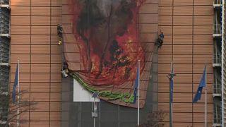 """""""Гринпис"""": Европа виновата в пожарах в Амазонии"""