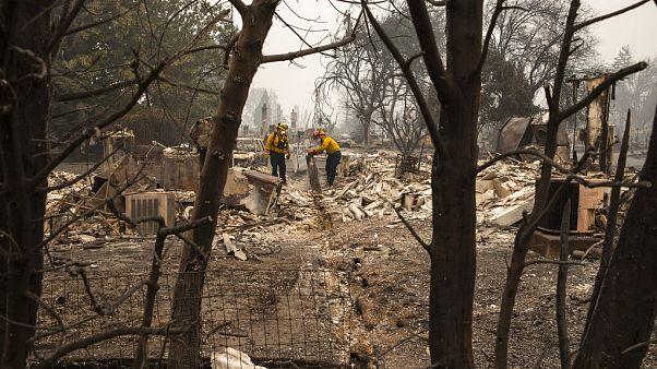 Incendies aux États-Unis : le gouverneur de Washington met en cause le réchauffement climatique