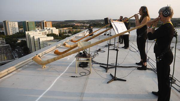 Οι μουσικοί παίζουν παραδοσιακό αλπικό κέρας (alphorn)