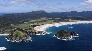 Blick auf den Kaitoke Strand auf der Great Barrier Insel, Neuseeland