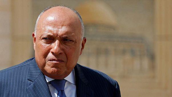 Mısır Dışişleri Bakanı Şukri