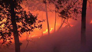 El viento y las altas temperaturas favorecieron la expansión de las llama
