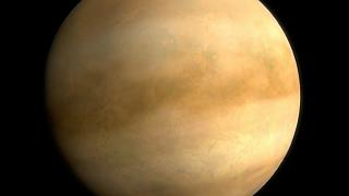 Венерианские хроники: есть ли жизнь на Голубой планете?