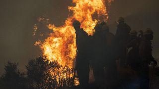 El negacionismo climático de Trump sobre los incendios forestales hace arder la carrera electoral