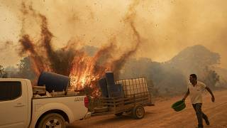 A volunteer tries to douse the fire on the Transpantaneira road in the Pantanal wetlands near Pocone, Mato Grosso state, Brazil, Friday, Sept. 11, 2020.
