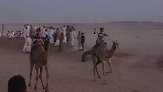 Camel Racing Back on in Egypt Post Covid-19 Lockdown Hiatus