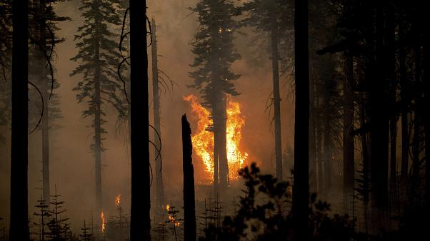 At least 25 wildfires are burning in the US state of California.