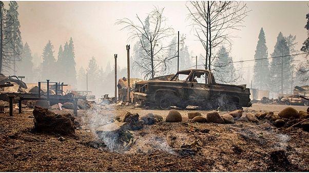 حرائق الغابات في الولايات المتحدة