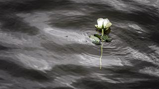 Pollution : en Serbie, les eaux du Danube s'assombrissent