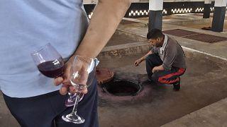 صناعة النبيذ في الجزائر تعاني بسبب كوفيد-19