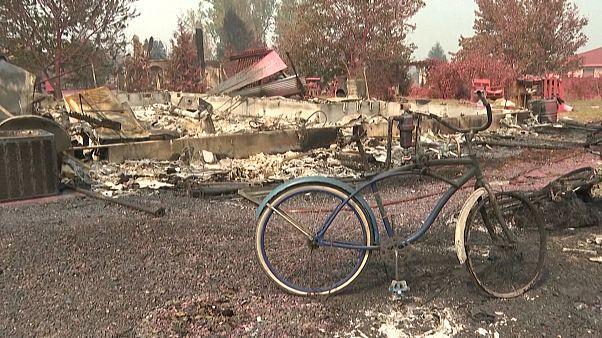USA: vastag hamuréteg maradt csupán a bozóttűz után