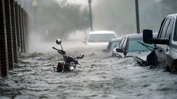 ABD'yi Sally Kasırgası vurdu