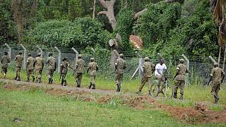 Uganda jail break: Manhunt for more than 200 naked and armed prisoners