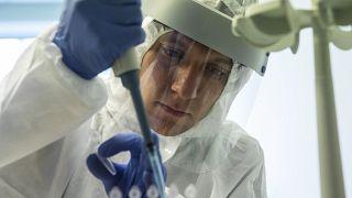 Центр тестирования на коронавирус в аэропорту Внуково
