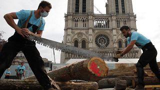 Des charpentiers sur le parvis de Notre-Dame-de-Paris