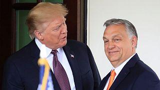 ترامپ و اوربان در کاخ سفید