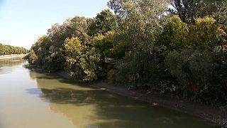 Barragem ameaça várzea em Budapeste