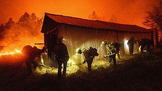 Tűzvész Kaliforniában