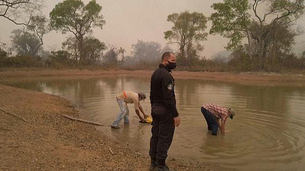 Reclusos em operação dos bombeiros