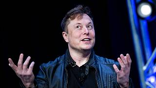Tesla'nın CEO'su Elon Musk.