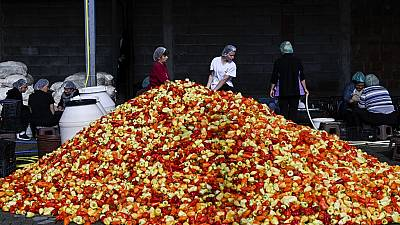 Women arrange red peppers used in the traditional popular dipping sauce Ajvar