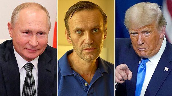 Владимир Путин, Алексей Навальный и Дональд Трамп претендуют на Нобелевскую премию