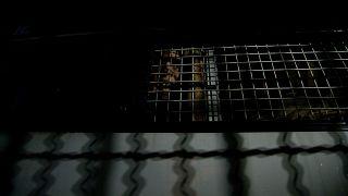 Börtön Thaiföldön - illusztráció
