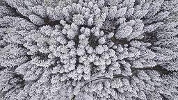Viel mehr als sonst im September: 10 der schönsten Bilder vom ersten Schnee