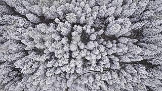 Schnee in Österreich
