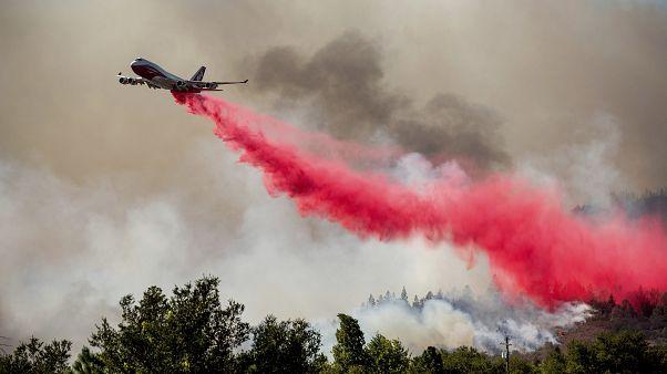 Una spettacolare scia rossa nel cielo: un aereo sta gettando un prodotto ritardante sulle fiamme nella Napa Valley.