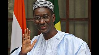 Mali's transitional government nominates new PM