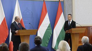 وزیر خارجه مجارستان با همتای لهستانی خود در بوداپست دیدار کرد