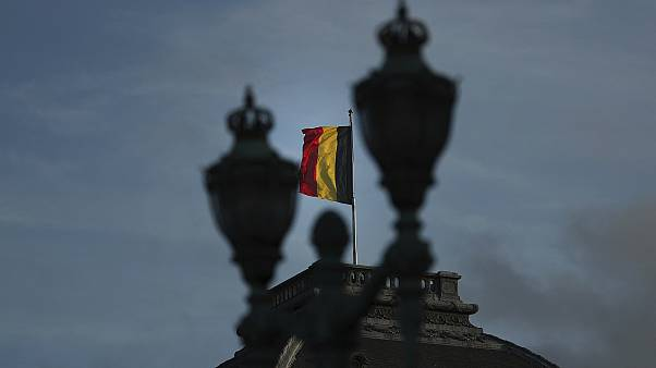 The Belgian flag flaps in the wind on the roof of the royal palace in Brussels.