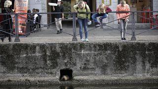 Las autoridades italianas extreman las medidas para evitar una segunda ola de coronavirus