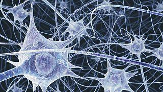 صورة رمزية للأعصاب