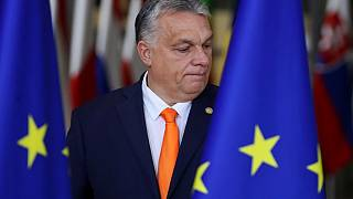 Hungarian officials say the govnerment account was tied to the cabinet of Prime Minister Viktor Orban.