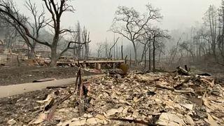 Tájkép a lángok eloltása után az amerikai Napa megyében