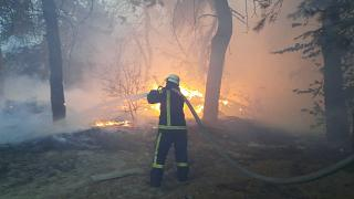 A total of 146 fires were recorded in Luhansk region on Wednesday.