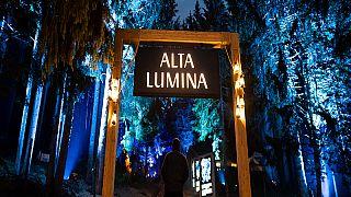 Alta Lumina