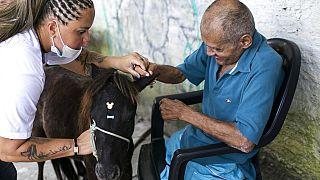 Бразилия: общение с животными спасает от одиночества