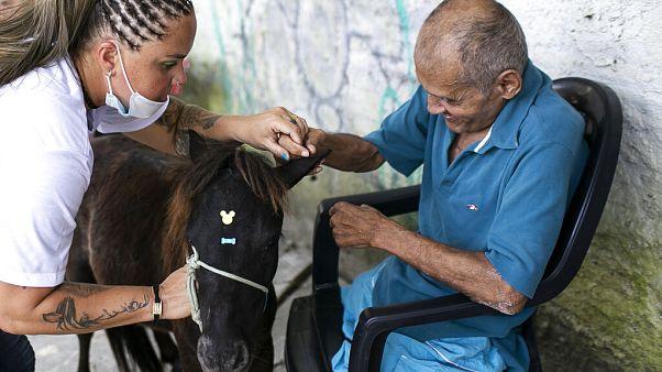 Βραζιλία: Εγκαταλελειμμένα ζώα στα γηροκομεία