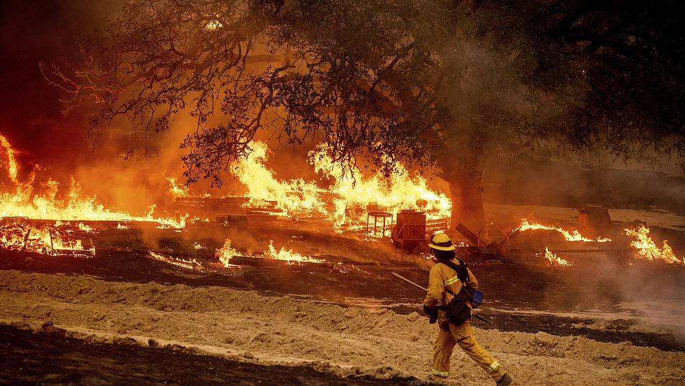California milestone: 1.6 million hectares burned in wildfires