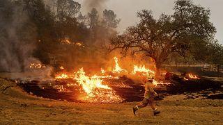Tűzoltó a kaliforniai Calistogában
