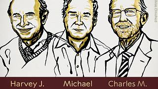The prize was awarded to Harvey J Alter, Michael Houghton and Charles M Rice
